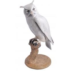 Horned Owl  (BA119)