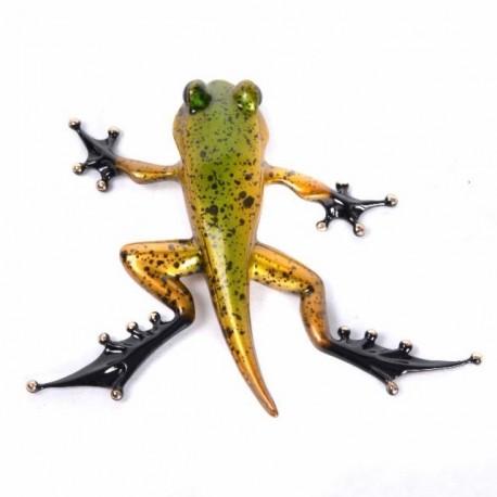 Froglet by Tim Cotterill