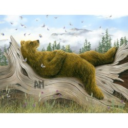 AM2 by Robert Bissell